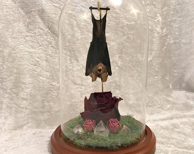 Sleeping Bat Dome - Roses and Quartz