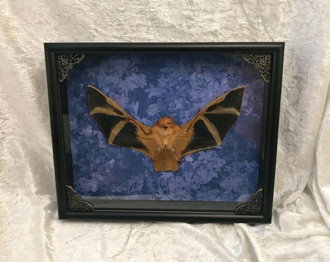 Framed Bat - Midnight Blue Botanical