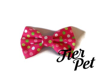 Bow tie for cat or dog ,bowtie ,multi dot pink, ,fier-pet,fierpet,pets collar,dog accessories