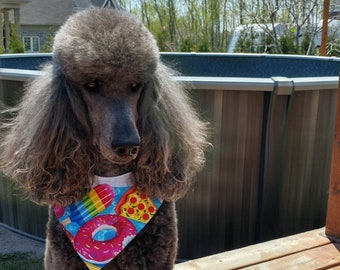 dog kierchief, dog bandana ,POOL party, and cloud  , snaps reversible bandana