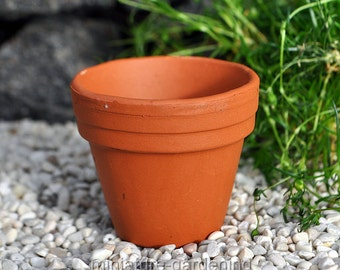 Terra Cotta Pot for Miniature Garden, Fairy Garden