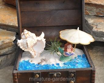 Seashells by the Seashore in a Wooden Trunk for Miniature Garden, Fairy Garden