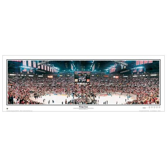 Joe Louis Arena Final Game Photo Size: 11 x 14