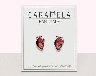 Human heart Stud Earrings Real Heart Earrings Human Heart Post earrings Gift Idea