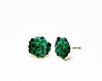 Succulent Stud Earrings Succulent Jewelry  Succulent Cactus Earrings Cactus Jewelry Plant Earrings Gift Idea