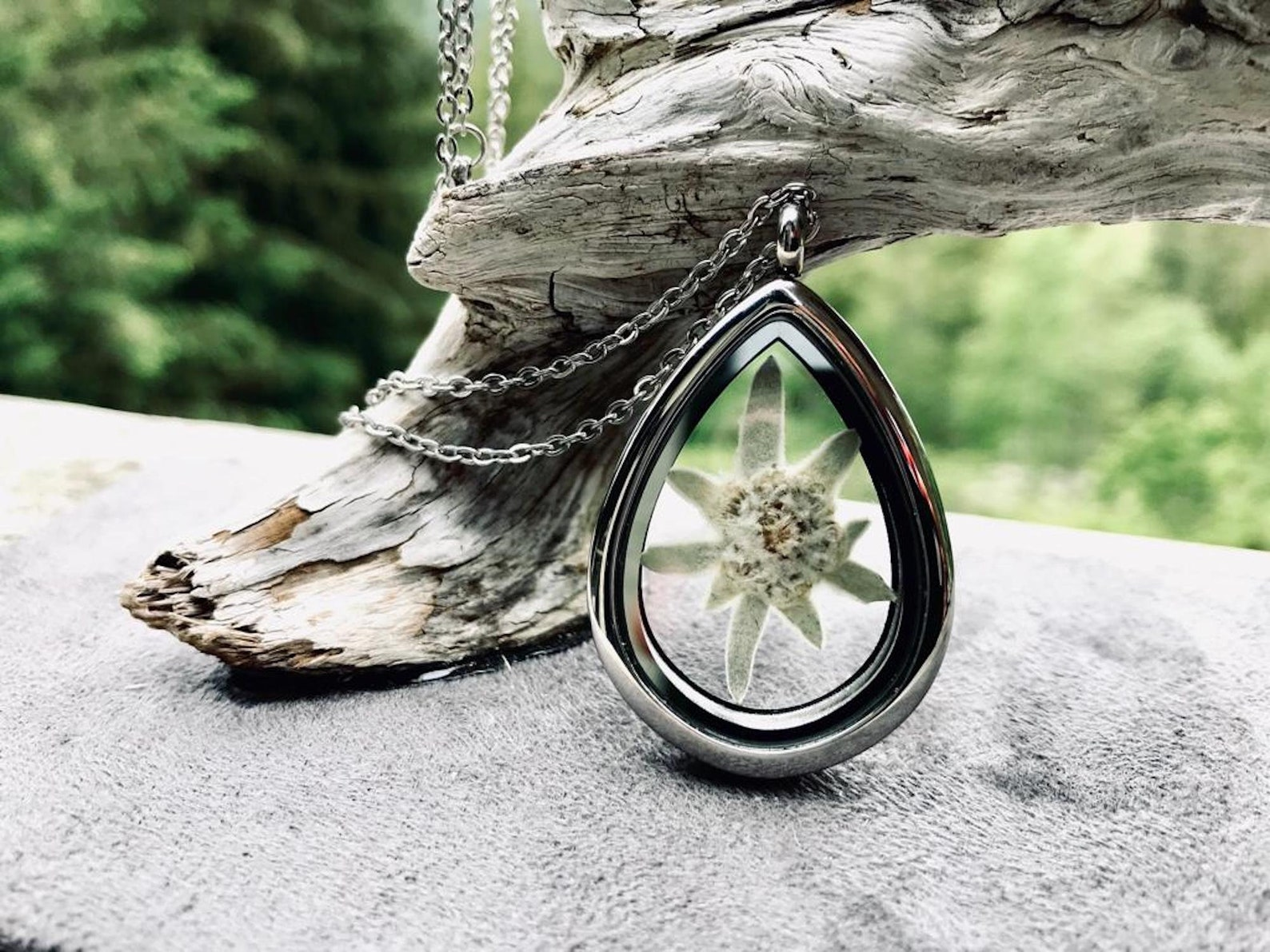 Real Pressed Edelweiss Locket | Silver Stainless Steel Teardrop Locket with Glass