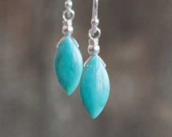 Genuine Arizona Turquoise Drop Earrings - December Birthstone