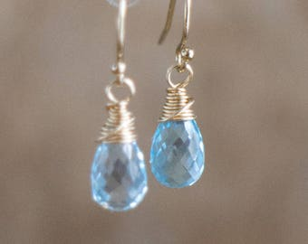 Blue Topaz Earrings - November Birthstone