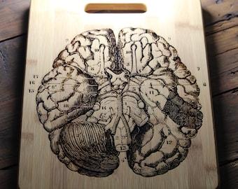 Brain Badge Nurse AFamilyForest Brain Pin Refrigerator Magnets Brooch Neurology Art