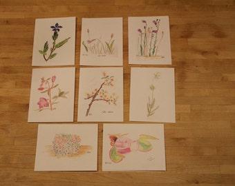 Greenland Wildflower Notecards