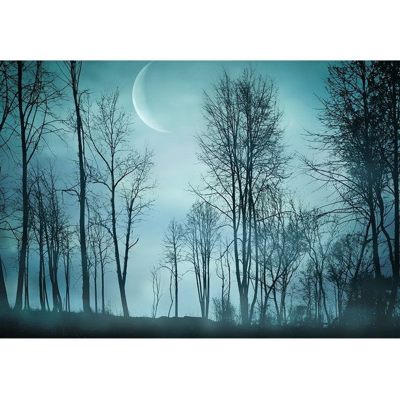 Self-adhesive Large Wallpaper Removable Wall Mural Night Forest in Vintage Background wall26