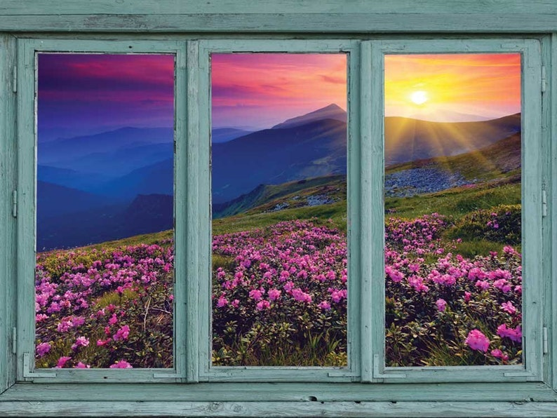 Sunset over blue mountains and rocky soil with flowers in bloom-Wall Mural