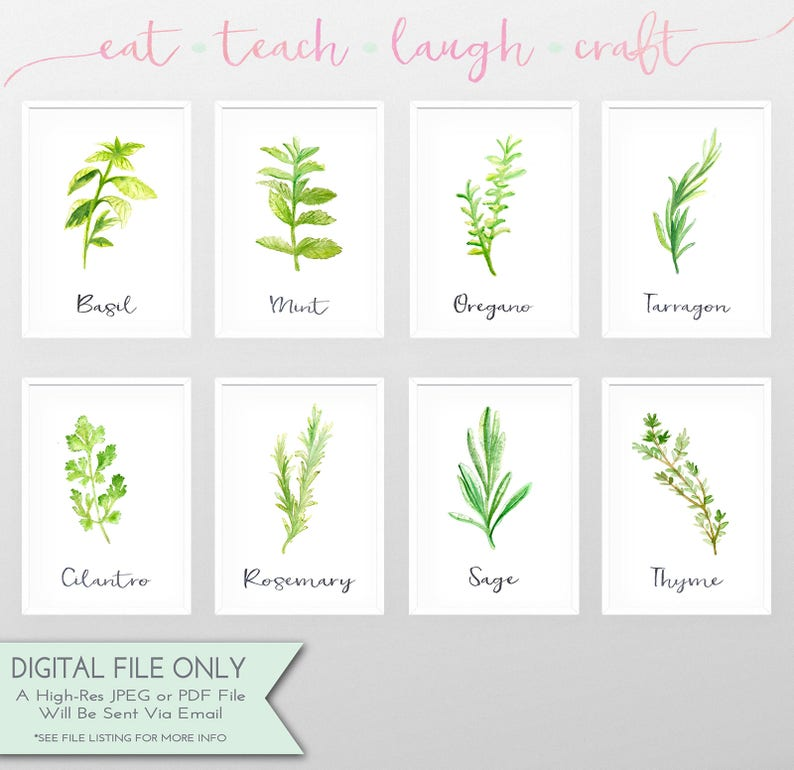 80% OFF SALE   Kitchen Herbs Watercolor Art Bundle   Set Of 8 Printables    Wall Art   Kitchen Decor {Instant Digital Download  5x7 AND 8x10}