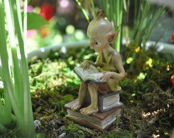 Garden Pixie Reading Book