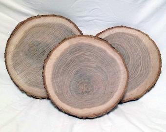 "12 Wood Slices 9"" to 10"" Rustic Wedding Centerpieces, Wood Slice, Wood Slabs, Wood Chargers, Tree Slice, Log Slices, Wood Slices Bulk"