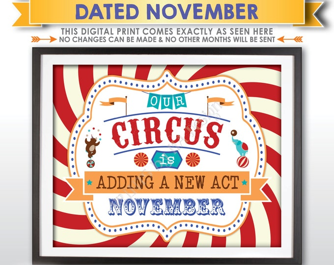 Circus Pregnancy Announcement, Our Circus is Adding a New Act in NOVEMBER Dated PRINTABLE Circus Themed Baby Reveal Sign, Carnival Sign <ID>