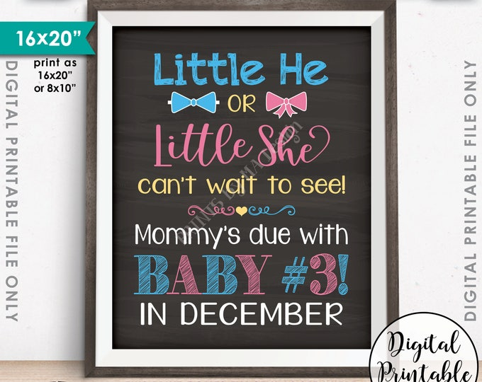 Baby Number 3 Pregnancy Announcement, Little He or Little She Can't Wait to See Baby #3 in DECEMBER Dated PRINTABLE Baby Reveal Sign <ID>