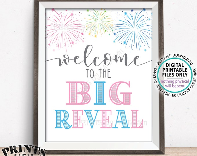 """Fireworks Gender Reveal Party Sign, Welcome to the BIg Reveal, Pink or Blue, PRINTABLE 8x10/16x20"""" Welcome Sign <ID>"""