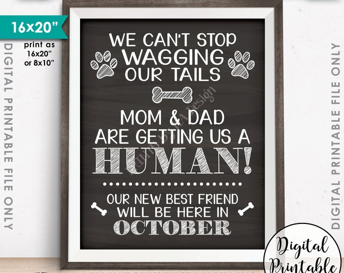 Dogs Pregnancy Announcement, Mom & Dad are Getting Us a Human, Due in OCTOBER Dated Chalkboard Style PRINTABLE Pregnancy Reveal Sign <ID>