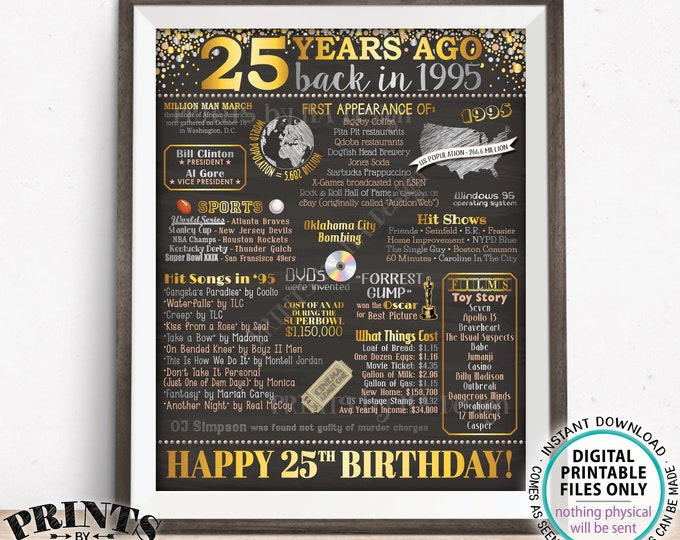 "25th Birthday Poster Board, Born in the Year 1995 Flashback 25 Years Ago B-day Gift, PRINTABLE 16x20"" Back in 1995 Sign <ID>"