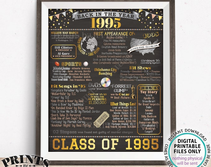 "Class of 1995 Reunion Decoration, Back in the Year 1995 Poster Board, Flashback to 1995 High School Reunion, PRINTABLE 16x20"" Sign <ID>"