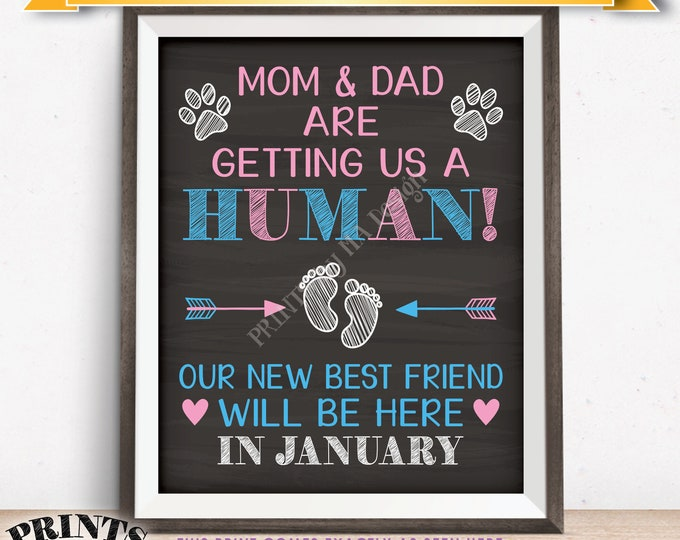 Pets Pregnancy Announcement Sign, Mom & Dad are Getting Us a Human in JANUARY Dated Chalkboard Style PRINTABLE Reveal for Dogs/Cats <ID>