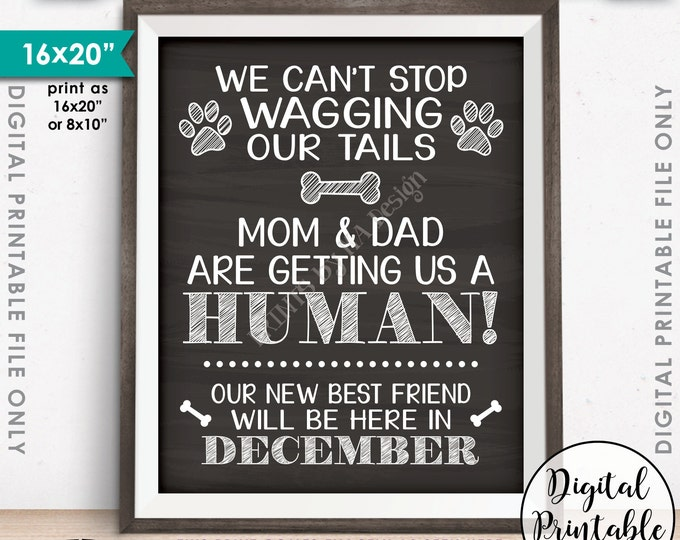 Dogs Pregnancy Announcement, Dog Reveal, Mom & Dad are Getting Us a Human in DECEMBER Dated Chalkboard Style PRINTABLE Baby Reveal Sign <ID>
