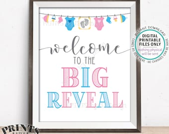 Welcome to the Big Reveal Sign, Pink or Blue Gender Reveal Party Sign, PRINTABLE 8x10/16x20 Gender Reveal Sign <ID>