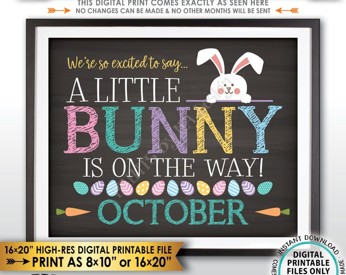 Easter Pregnancy Announcement, So Excited A Little Bunny is on the Way in OCTOBER dated PRINTABLE Chalkboard Style Baby Reveal Sign <ID>