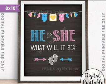 "Gender Reveal Sign, He or She What Will It Be Gender Reveal Party, Pink or Blue Sign, 8x10"" Chalkboard Style Printable Instant Download"