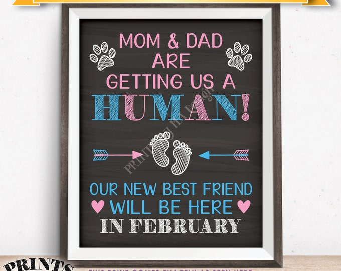 Pets Pregnancy Announcement Sign, Mom & Dad are Getting Us a Human in FEBRUARY Dated Chalkboard Style PRINTABLE Reveal for Dogs/Cats <ID>