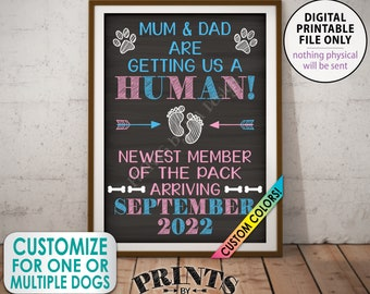 Dog Pregnancy Announcement, Mum & Dad are Getting a Human, Newest Member of the Pack, Custom Chalkboard Style PRINTABLE Baby Reveal Sign