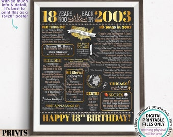 """18th Birthday Poster Board, Back in the Year 2003 Flashback 18 Years Ago B-day Gift, PRINTABLE 16x20"""" Born in 2003 Sign <ID>"""