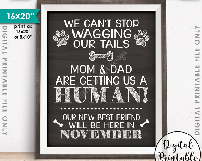 Dogs Pregnancy Announcement, Mom & Dad are Getting Us a Human, Due in NOVEMBER Dated Chalkboard Style PRINTABLE Pregnancy Reveal Sign <ID>