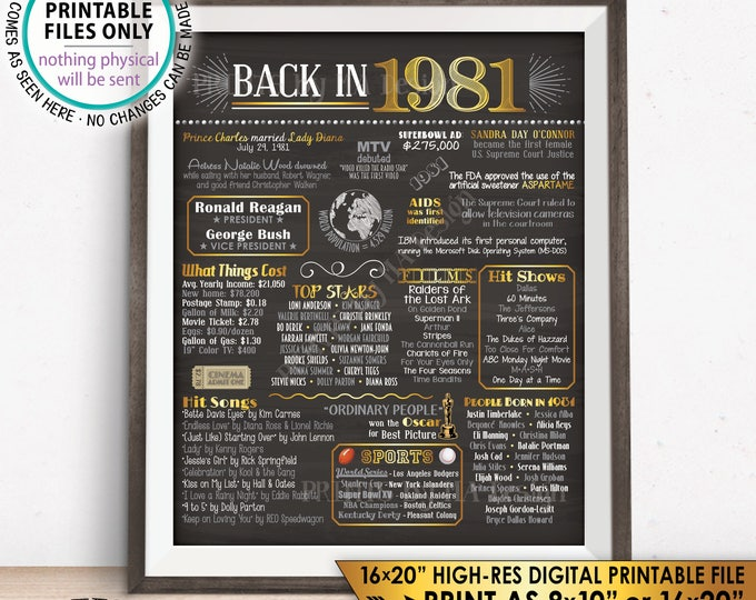 "1981 Flashback Poster, Flashback to 1981 USA History Back in 1981 Birthday Anniversary Reunion, PRINTABLE 16x20"" Sign <ID>"