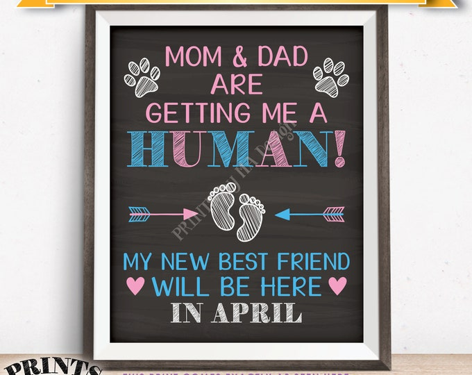 Pet Pregnancy Announcement Sign, Mom & Dad are Getting Me a Human in APRIL Dated Chalkboard Style PRINTABLE Baby Reveal for a Dog/Cat <ID>