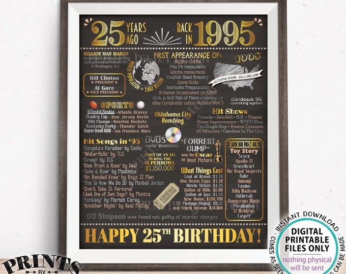 "25th Birthday Poster Board, Back in the Year 1995 Flashback 25 Years Ago B-day Gift, PRINTABLE 16x20"" Born in 1995 Sign <ID>"