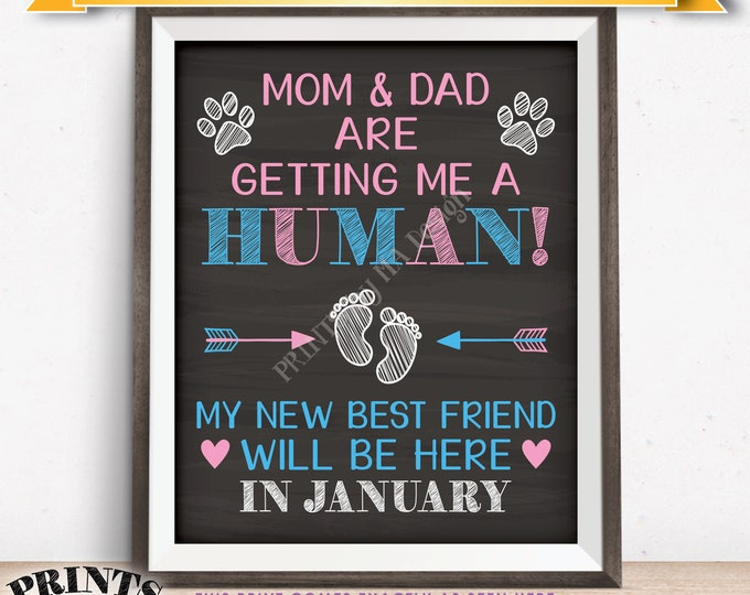 Pet Pregnancy Announcement Sign, Mom & Dad are Getting Me a Human in JANUARY Dated Chalkboard Style PRINTABLE Baby Reveal for a Dog/Cat <ID>