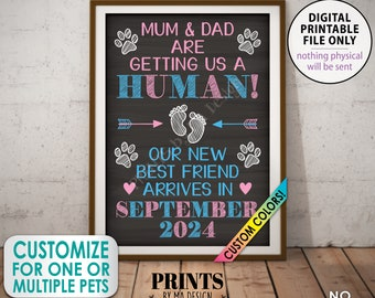 Pet Pregnancy Announcement, Mum & Dad are Getting a Human, New Best Friend Arriving, Custom Chalkboard Style PRINTABLE A1 Baby Reveal Sign