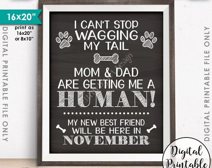 Dog Pregnancy Announcement, Wag Tail, Mom & Dad are Getting Me a Human in NOVEMBER Dated Chalkboard Style PRINTABLE Baby Reveal Sign <ID>