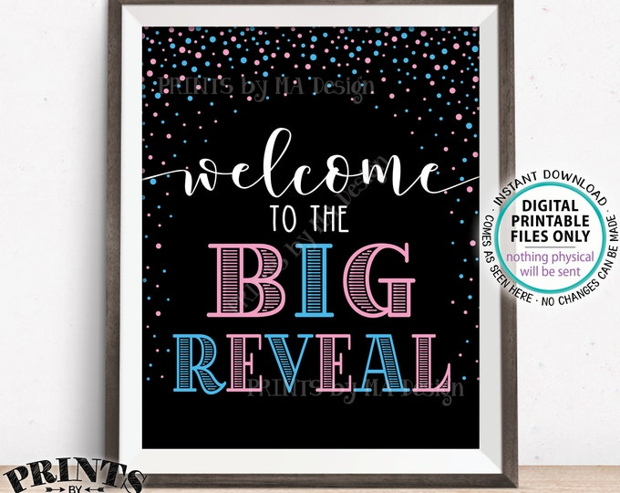 Welcome to the Big Reveal Sign, Gender Reveal Party Sign, PRINTABLE 8x10/16x20 Gender Reveal Sign, Pink & Blue Confetti <ID>