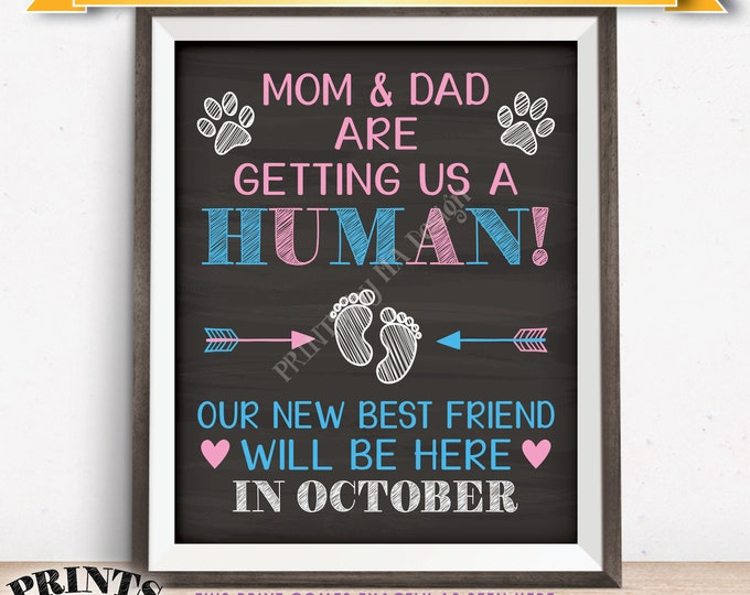 Pets Pregnancy Announcement Sign, Mom & Dad are Getting Us a Human in OCTOBER Dated Chalkboard Style PRINTABLE Reveal for Dogs/Cats <ID>
