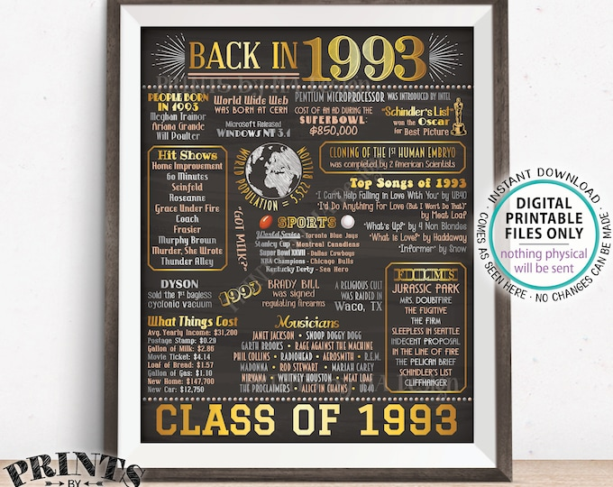 "Back in 1993 Poster Board, Flashback to 1993 High School Reunion, Graduating Class of 1993 Reunion Decoration, PRINTABLE 16x20"" Sign <ID>"