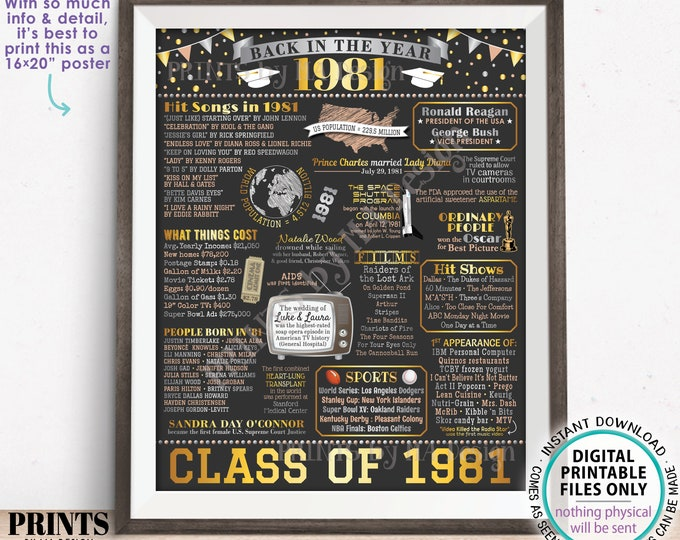 """Back in 1981 Poster Board, Graduating Class of 1981 Reunion Decoration, Flashback to 1981 High School Reunion, PRINTABLE 16x20"""" Sign <ID>"""