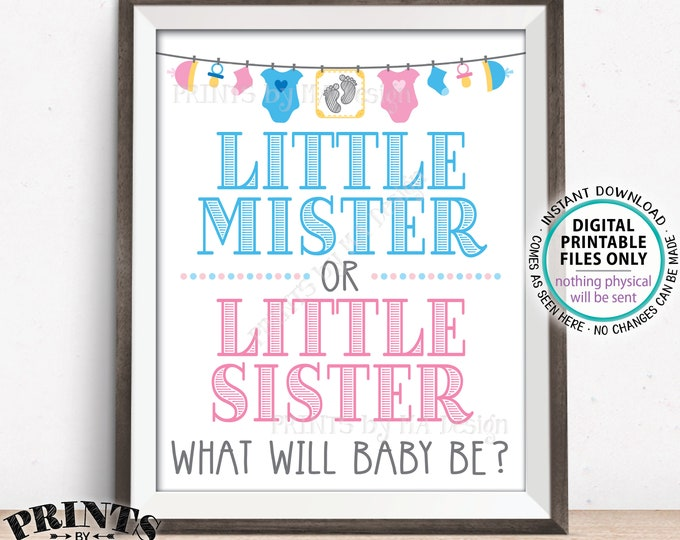 "Gender Reveal Party Sign, Little Mister or Little Sister, Boy or Girl, Pink or Blue, PRINTABLE 8x10/16x20"" Gender Reveal Sign <ID>"