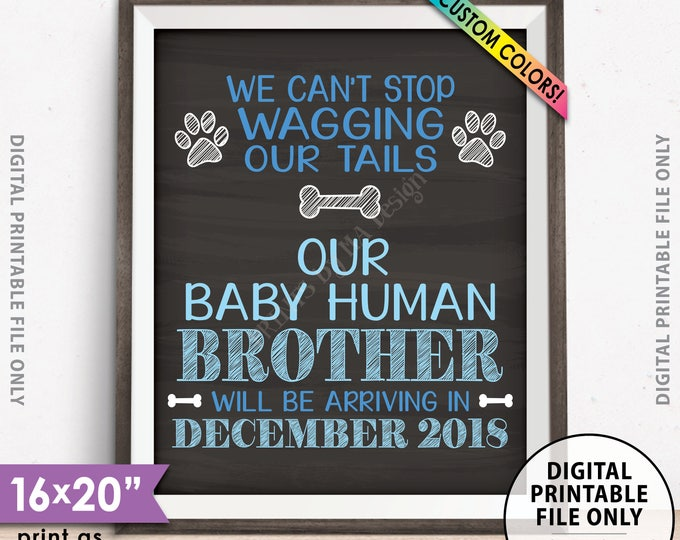 """Gender Reveal Dog Pregnancy Announcement, Mom & Dad are getting us a Human BROTHER, It's a Boy, Chalkboard Style PRINTABLE 8x10/16x20"""" Sign"""