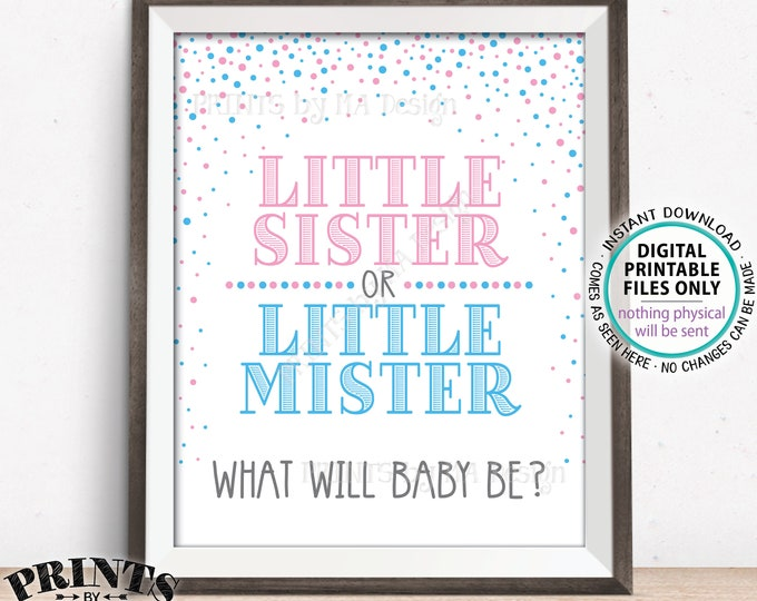 "Gender Reveal Party Sign, Little Sister or Little Mister, PRINTABLE 8x10/16x20"" Gender Reveal Sign, Pink & Blue Confetti <ID>"