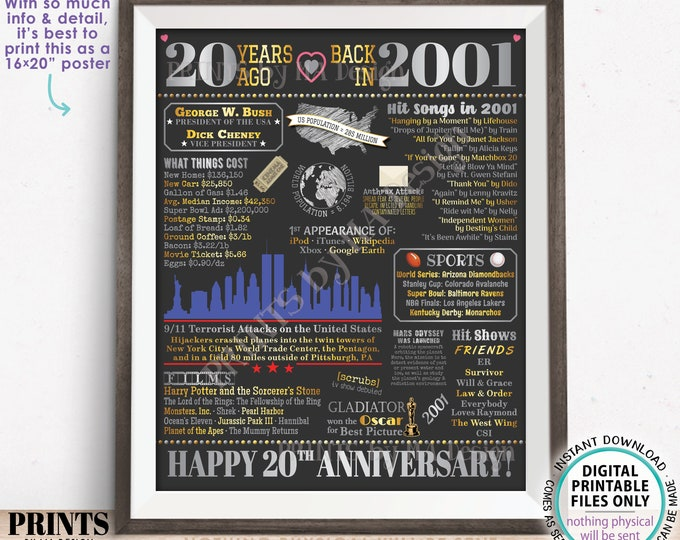 """20th Anniversary Poster Board, Married in 2001 Anniversary Gift, Back in 2001 Flashback 20 Years, PRINTABLE 16x20"""" 2001 Sign, Silver <ID>"""