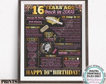 """16th Birthday Poster Board, Born in the Year 2005 Flashback 16 Years Ago B-day Gift, PRINTABLE 16x20"""" Back in 2005 Sign, Pink <ID>"""