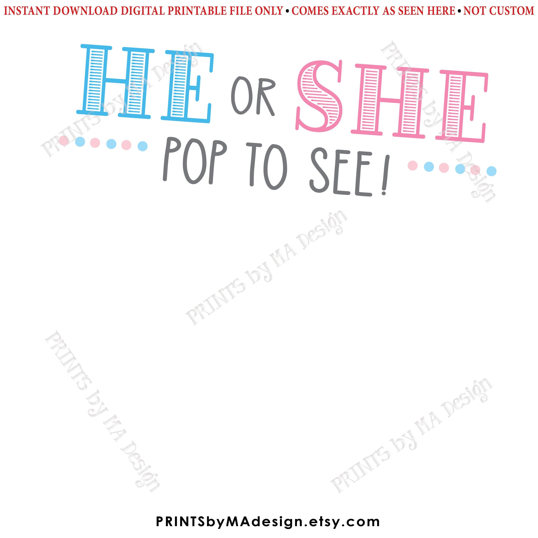 photograph regarding Printable Dart Board identified as Gender Describe Balloon Dart Board, He or She Pop in the direction of Watch